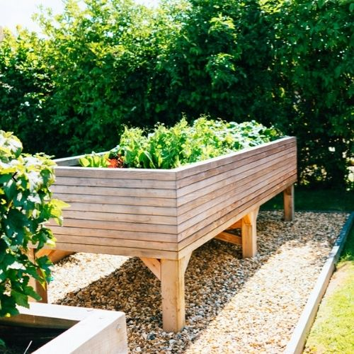 Extra Large Wooden Vegetable Trough on Legs
